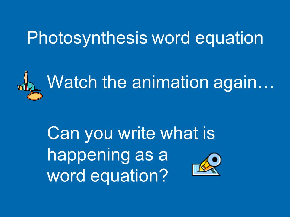 Photosynthesis word equation Watch the animation again… Can you write what is happening as a word equation?