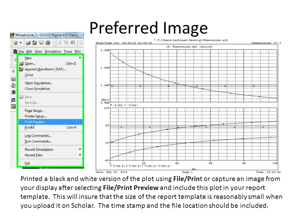Preferred Image Printed a black and white version of the plot using File/Print or capture an image from your display after selecting File/Print Preview and include this plot in your report template.