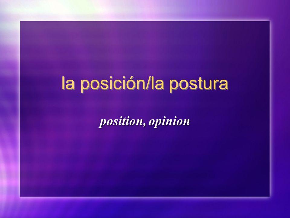 la posición/la postura position, opinion