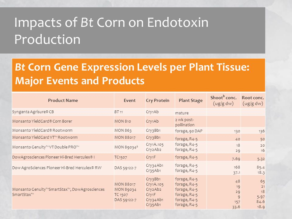 Bt Corn Gene Expression Levels Bt Corn Gene Expression Levels per Plant Tissue: Major Events and Products Product NameEventCry ProteinPlant Stage Shoot b conc.
