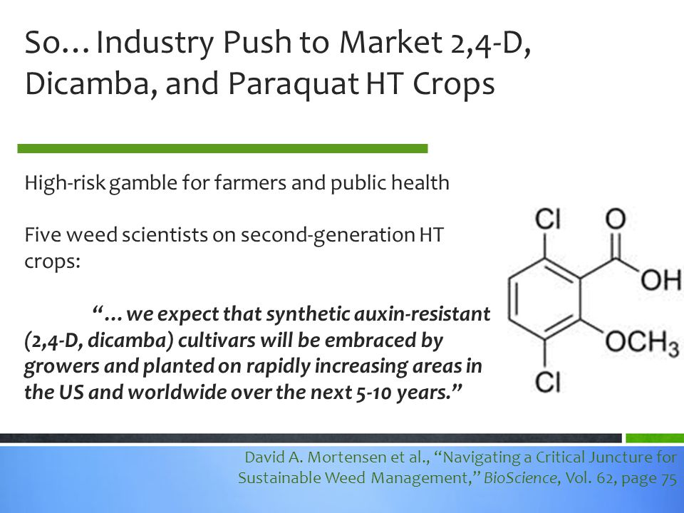 So…Industry Push to Market 2,4-D, Dicamba, and Paraquat HT Crops High-risk gamble for farmers and public health Five weed scientists on second-generation HT crops: …we expect that synthetic auxin-resistant (2,4-D, dicamba) cultivars will be embraced by growers and planted on rapidly increasing areas in the US and worldwide over the next 5-10 years. David A.