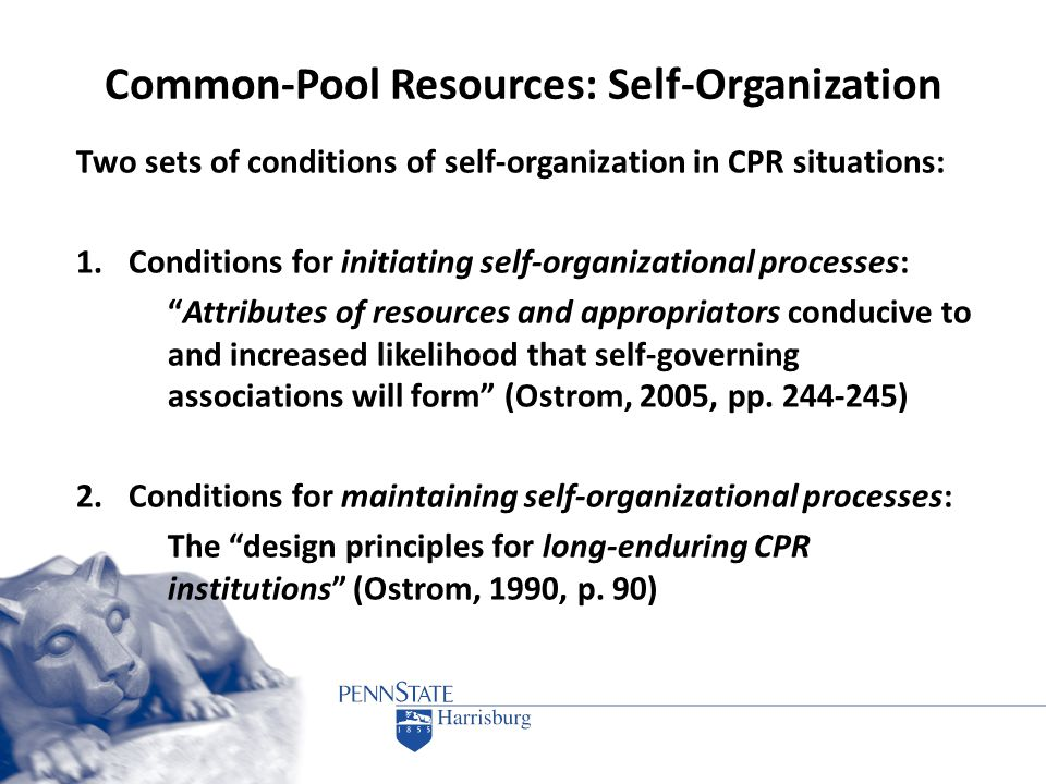 Common-Pool Resources: Self-Organization Two sets of conditions of self-organization in CPR situations: 1.Conditions for initiating self-organizationa