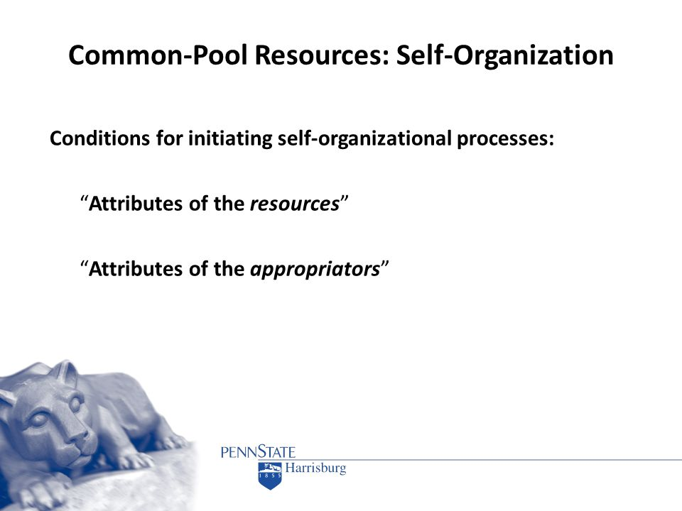 "Common-Pool Resources: Self-Organization Conditions for initiating self-organizational processes: ""Attributes of the resources"" ""Attributes of the app"