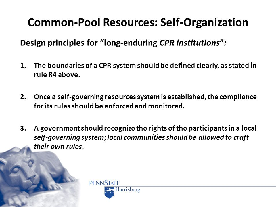 "Common-Pool Resources: Self-Organization Design principles for ""long-enduring CPR institutions"": 1.The boundaries of a CPR system should be defined cl"