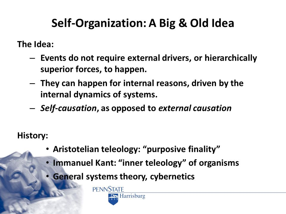 Self-Organization: A Big & Old Idea The Idea: – Events do not require external drivers, or hierarchically superior forces, to happen. – They can happe