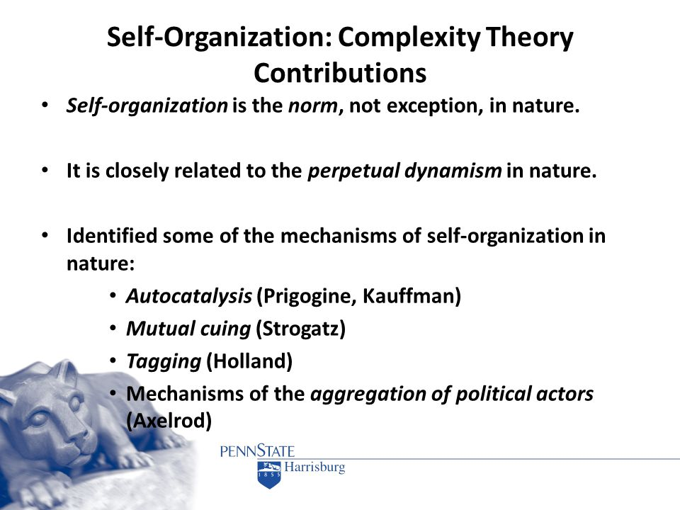 Self-Organization: Complexity Theory Contributions Self-organization is the norm, not exception, in nature. It is closely related to the perpetual dyn