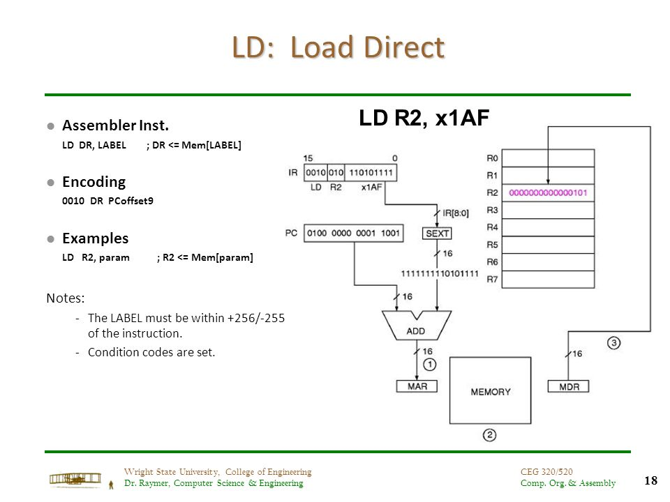 18 Wright State University, College of Engineering Dr. Raymer, Computer Science & Engineering CEG 320/520 Comp. Org. & Assembly LD: Load Direct l Asse