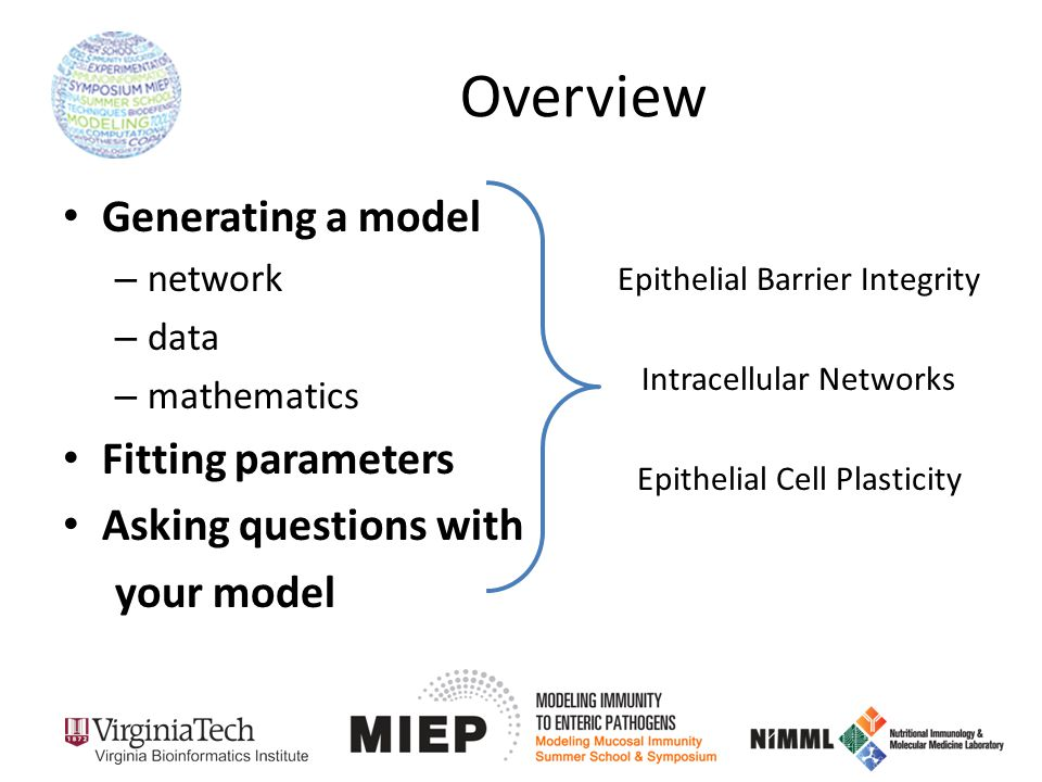 Overview Generating a model – network – data – mathematics Fitting parameters Asking questions with your model Epithelial Barrier Integrity Intracellular Networks Epithelial Cell Plasticity