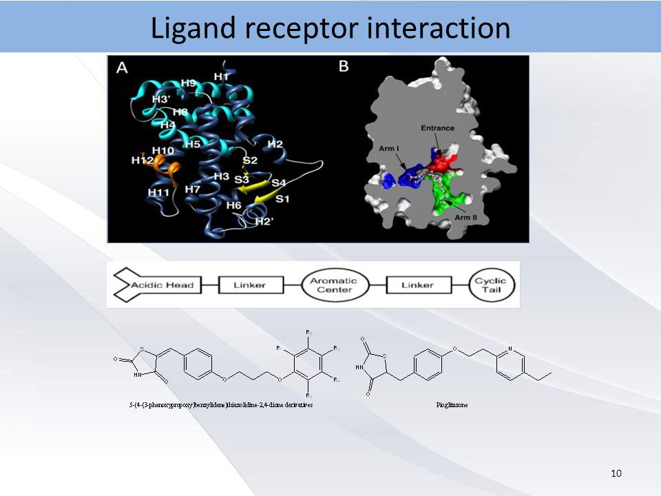 10 Ligand receptor interaction