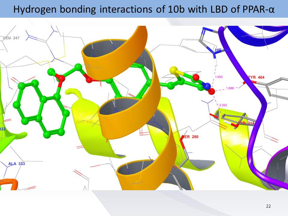 Hydrogen bonding interactions of 10b with LBD of PPAR-α 22