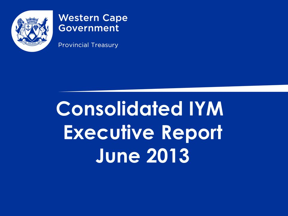 Consolidated IYM Executive Report June 2013