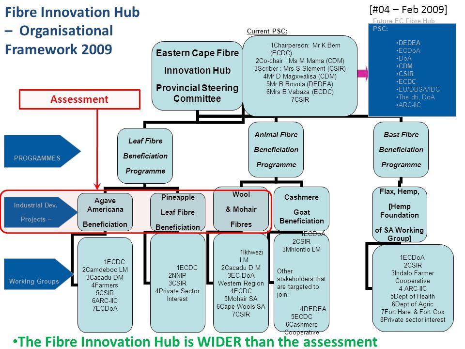Future EC Fibre Hub PSC: DEDEA ECDoA DoA CDM CSIR ECDC EU/DBSA/IDC The dti, DoA ARC-IIC PROGRAMMES Industrial Dev. Projects – Working Groups [#04 – Fe