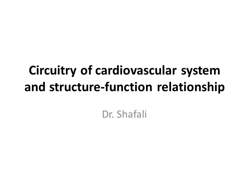 Circuitry of cardiovascular system and structure-function relationship Dr. Shafali