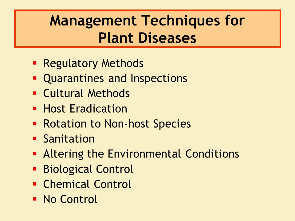 Management Techniques for Plant Diseases  Regulatory Methods  Quarantines and Inspections  Cultural Methods  Host Eradication  Rotation to Non-ho