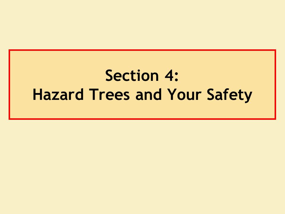 Section 4: Hazard Trees and Your Safety
