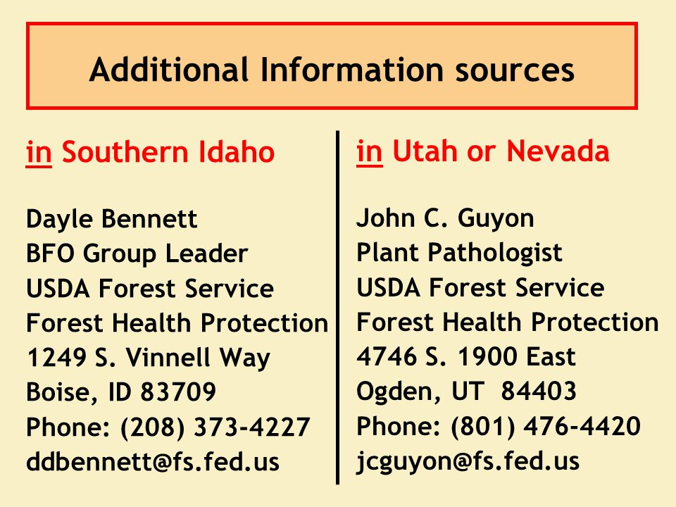 Additional Information sources in Utah or Nevada John C. Guyon Plant Pathologist USDA Forest Service Forest Health Protection 4746 S. 1900 East Ogden,