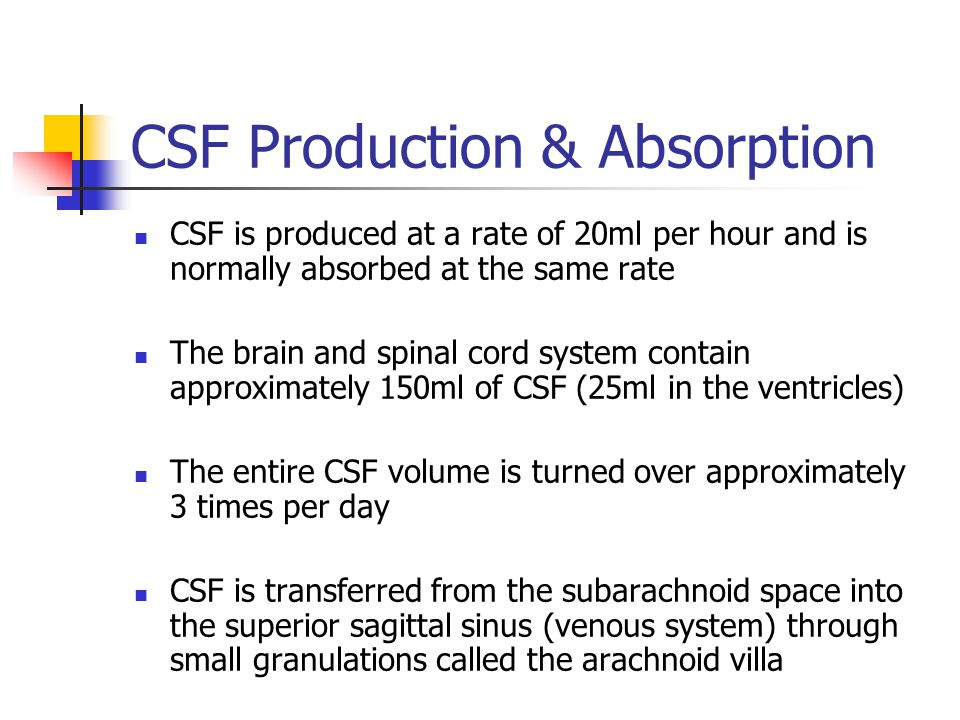 CSF Production & Absorption CSF is produced at a rate of 20ml per hour and is normally absorbed at the same rate The brain and spinal cord system contain approximately 150ml of CSF (25ml in the ventricles) The entire CSF volume is turned over approximately 3 times per day CSF is transferred from the subarachnoid space into the superior sagittal sinus (venous system) through small granulations called the arachnoid villa