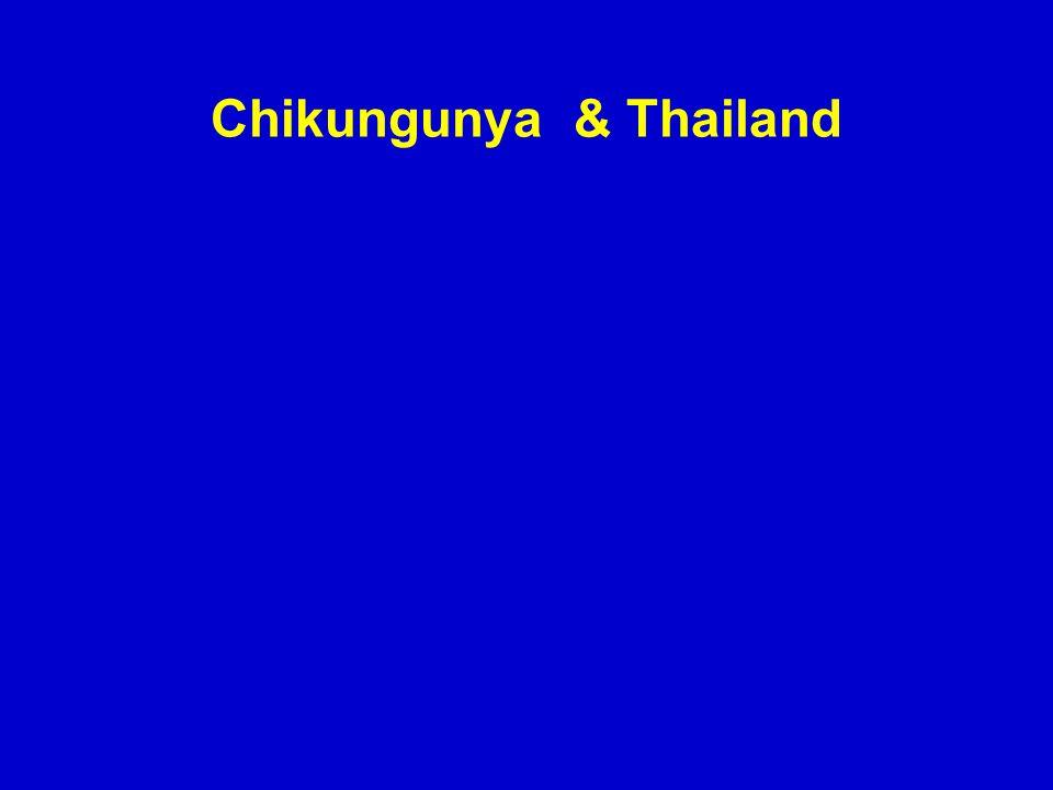 Chikungunya & Thailand