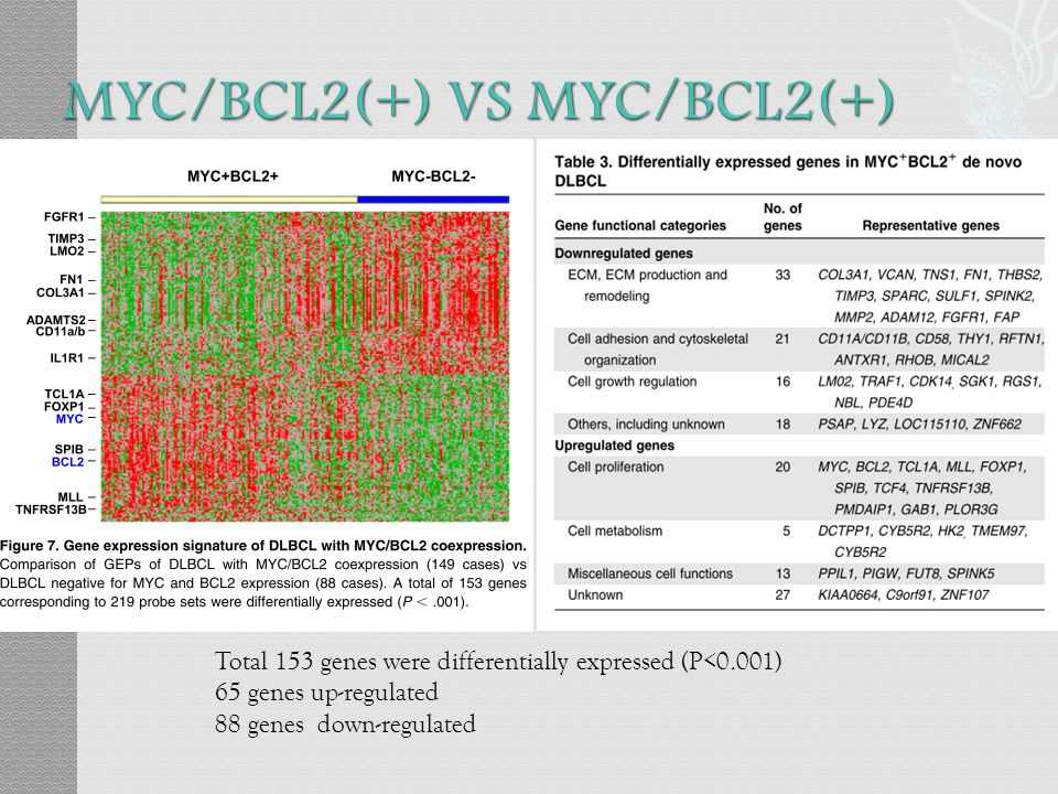Total 153 genes were differentially expressed (P<0.001) 65 genes up-regulated 88 genes down-regulated