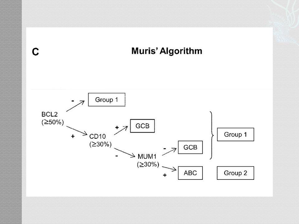  64% MYC(+), 50% BCL-2(+)  34% MYC(+) + BCL-2(+)  19% MYC(-) + BCL-2(-) MYC+BCL2OthersP 5-yr OS30%75%<0.0001 5-yr PFS27%73%<0.0001
