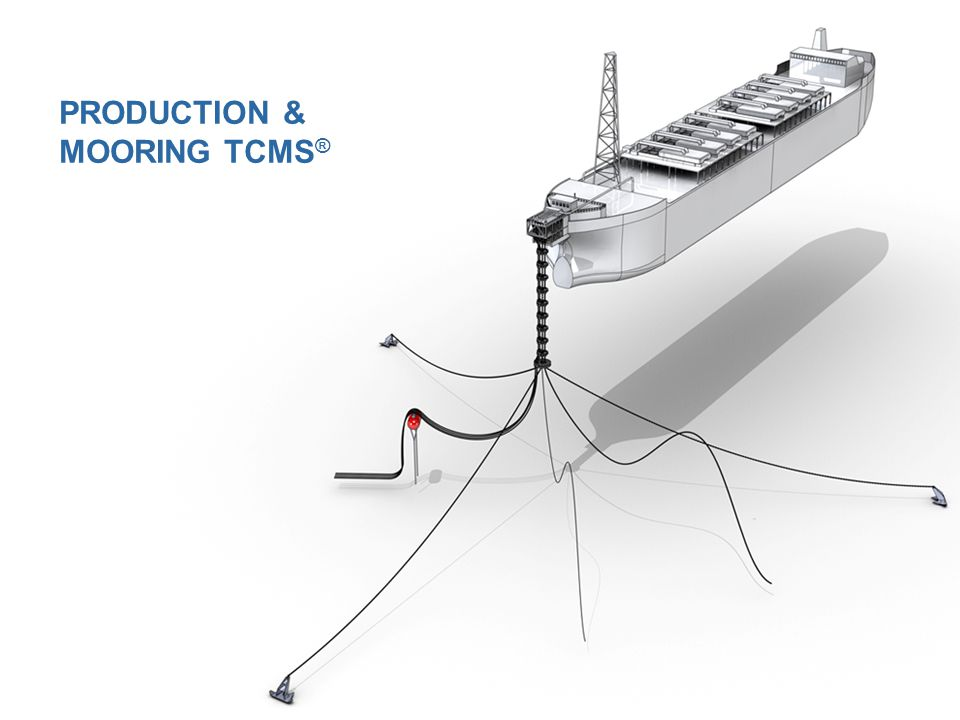 CHAIN SWIVEL BOW SURGE CONNECTOR STAND ALONE MOORING TCMS ®
