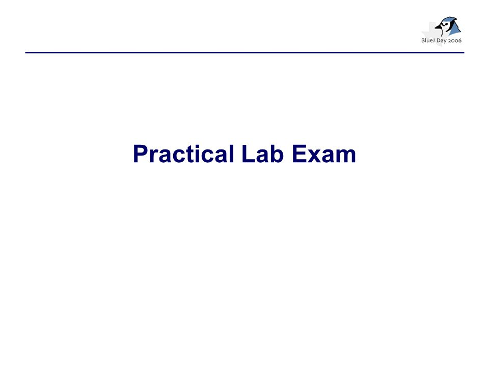 Practical Lab Exam