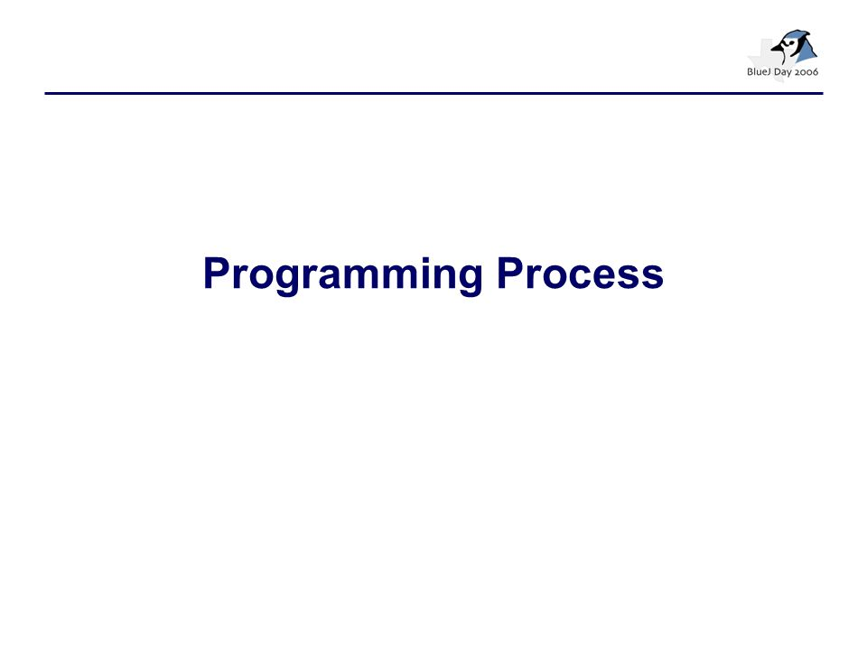 Programming Process