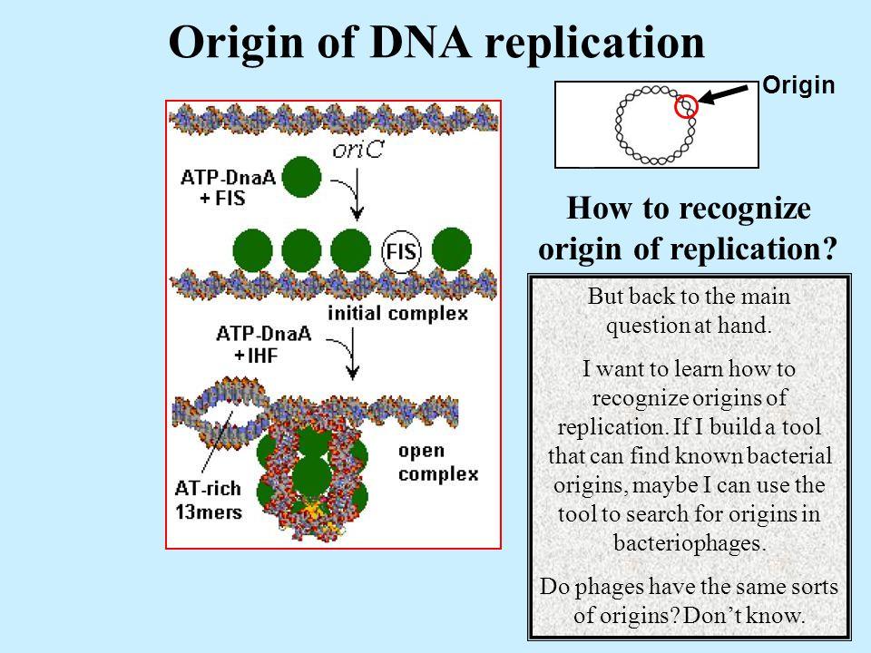 Origin of DNA replication Origin + + How to recognize origin of replication.
