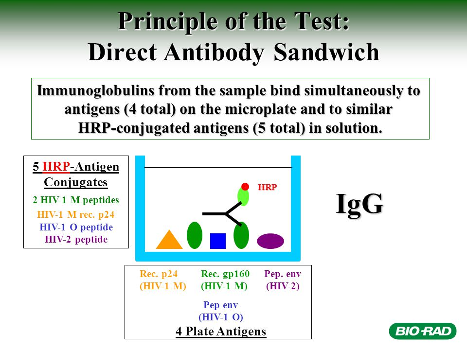 Principle of the Test: Direct Antibody Sandwich Immunoglobulins from the sample bind simultaneously to antigens (4 total) on the microplate and to similar HRP-conjugated antigens (5 total) in solution.