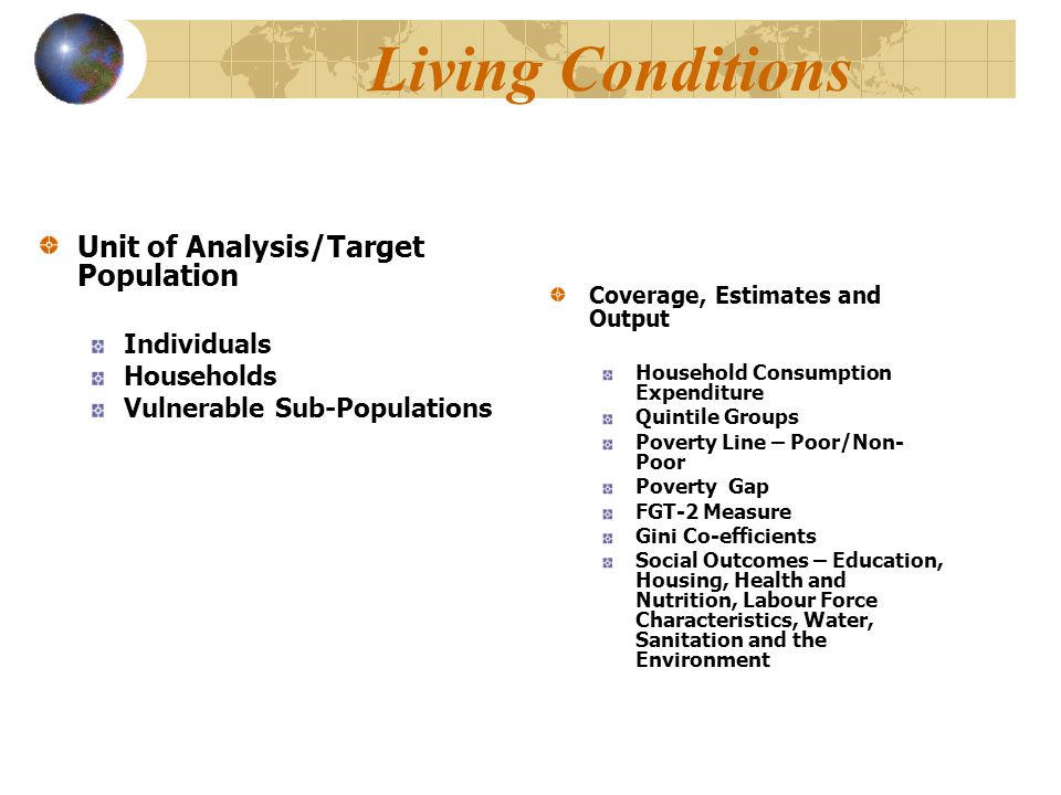 Living Conditions Unit of Analysis/Target Population Individuals Households Vulnerable Sub-Populations Coverage, Estimates and Output Household Consum