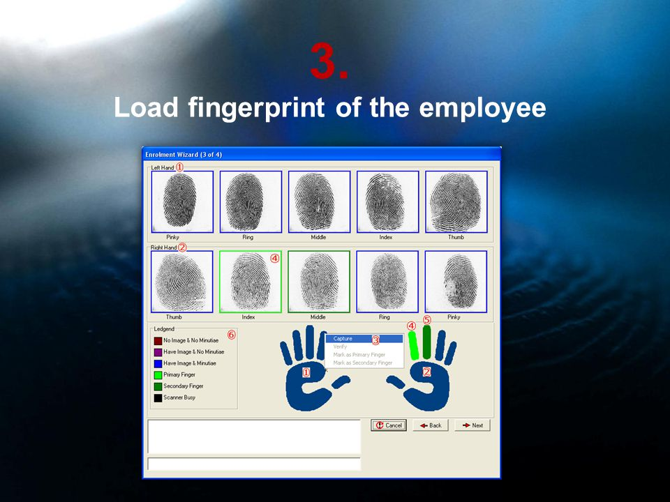 3. Load fingerprint of the employee