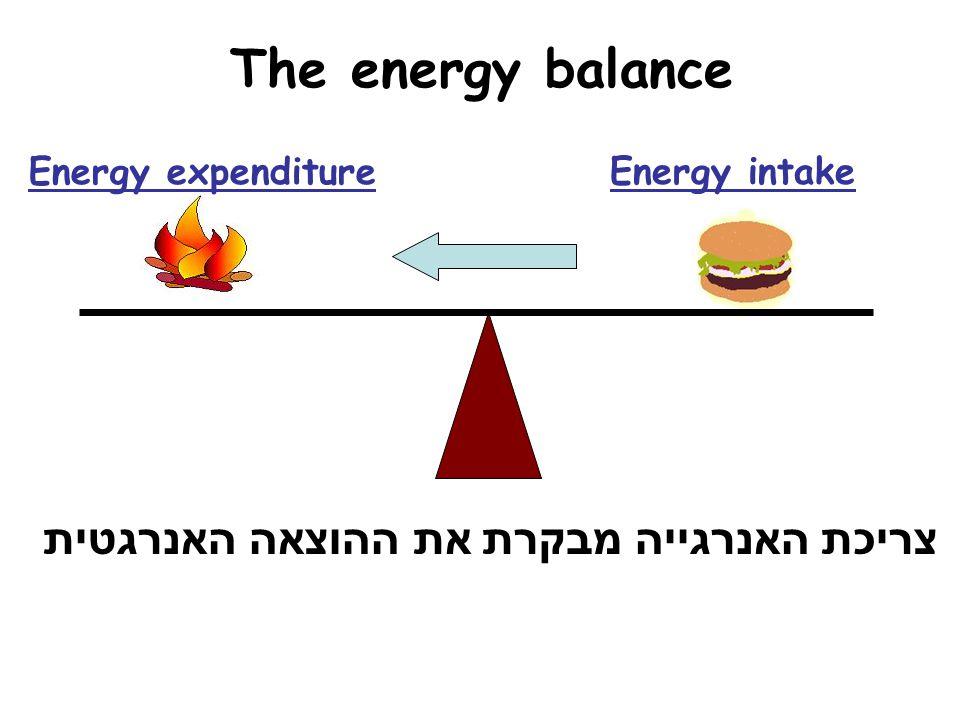 The energy balance Energy expenditure Energy intake צריכת האנרגייה מבקרת את ההוצאה האנרגטית