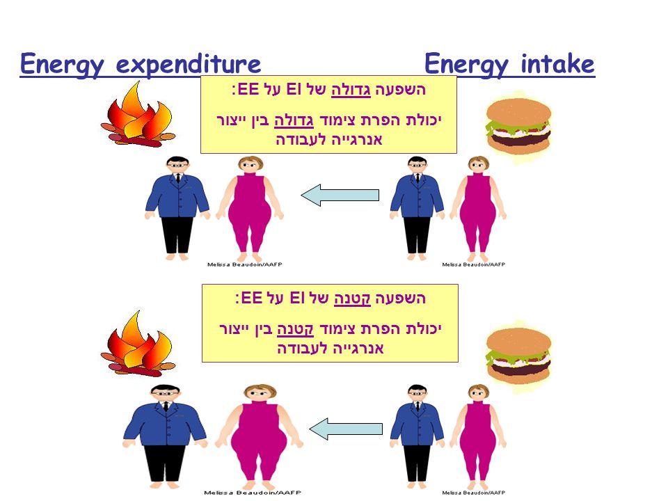 Energy expenditure Energy intake השפעה גדולה של EI על EE: יכולת הפרת צימוד גדולה בין ייצור אנרגייה לעבודה השפעה קטנה של EI על EE: יכולת הפרת צימוד קטנ