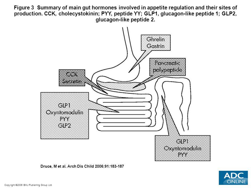 Copyright ©2006 BMJ Publishing Group Ltd. Druce, M et al. Arch Dis Child 2006;91:183-187 Figure 3 Summary of main gut hormones involved in appetite re