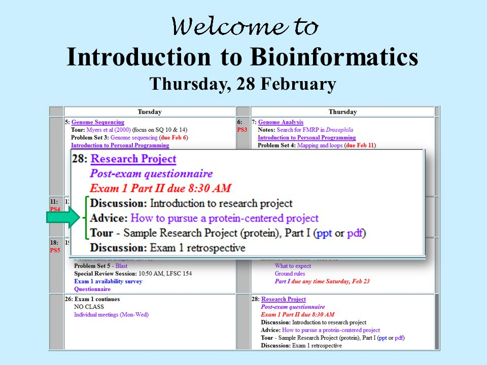 Introduction to Bioinformatics Thursday, 28 February