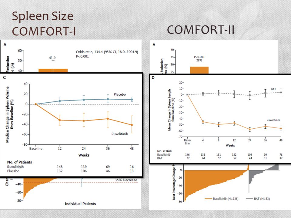 Spleen Size COMFORT-I COMFORT-II