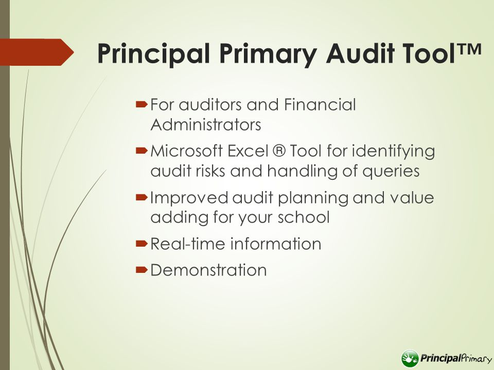 Principal Primary Audit Tool™  For auditors and Financial Administrators  Microsoft Excel ® Tool for identifying audit risks and handling of queries  Improved audit planning and value adding for your school  Real-time information  Demonstration