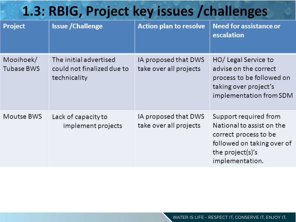 1.3: RBIG, Project key issues /challenges ProjectIssue /ChallengeAction plan to resolveNeed for assistance or escalation Mooihoek/ Tubase BWS The initial advertised could not finalized due to technicality IA proposed that DWS take over all projects HO/ Legal Service to advise on the correct process to be followed on taking over project's implementation from SDM Moutse BWSLack of capacity to implement projects IA proposed that DWS take over all projects Support required from National to assist on the correct process to be followed on taking over of the project(s)'s implementation.