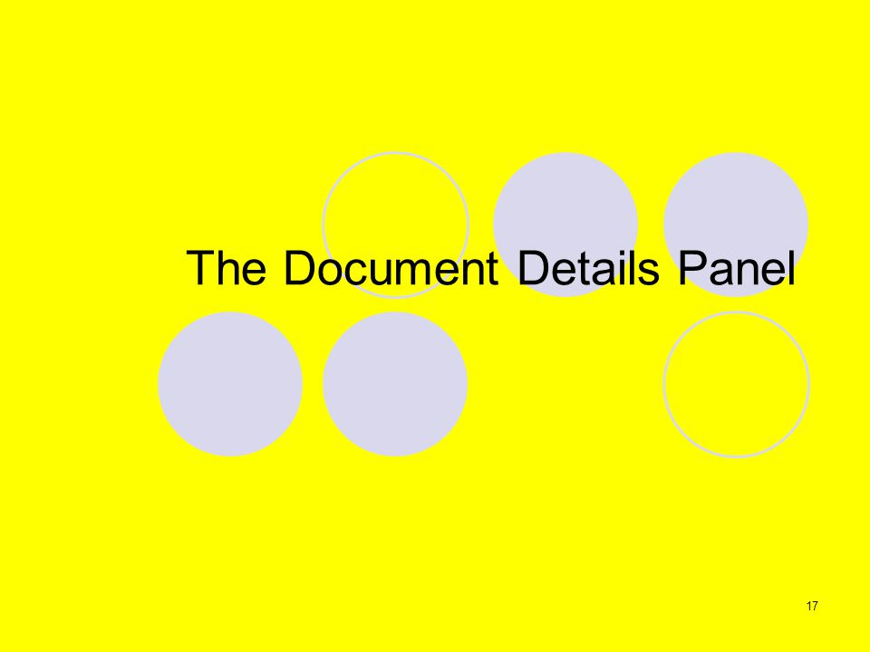 17 The Document Details Panel