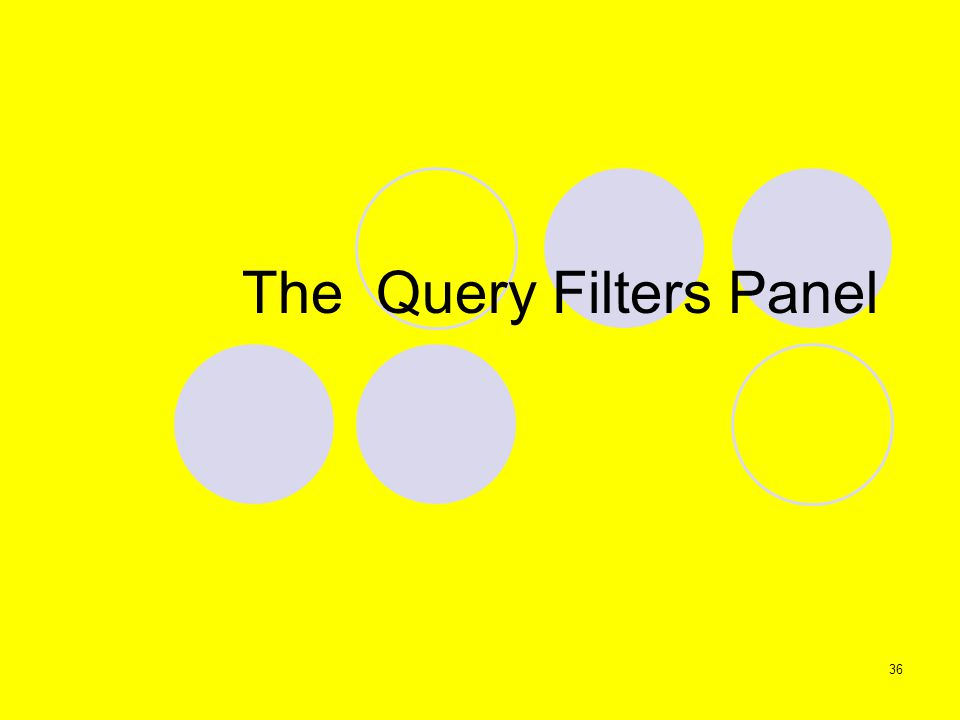 36 The Query Filters Panel