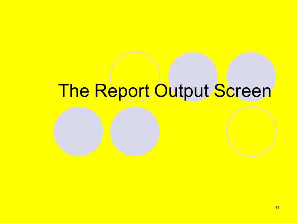 41 The Report Output Screen