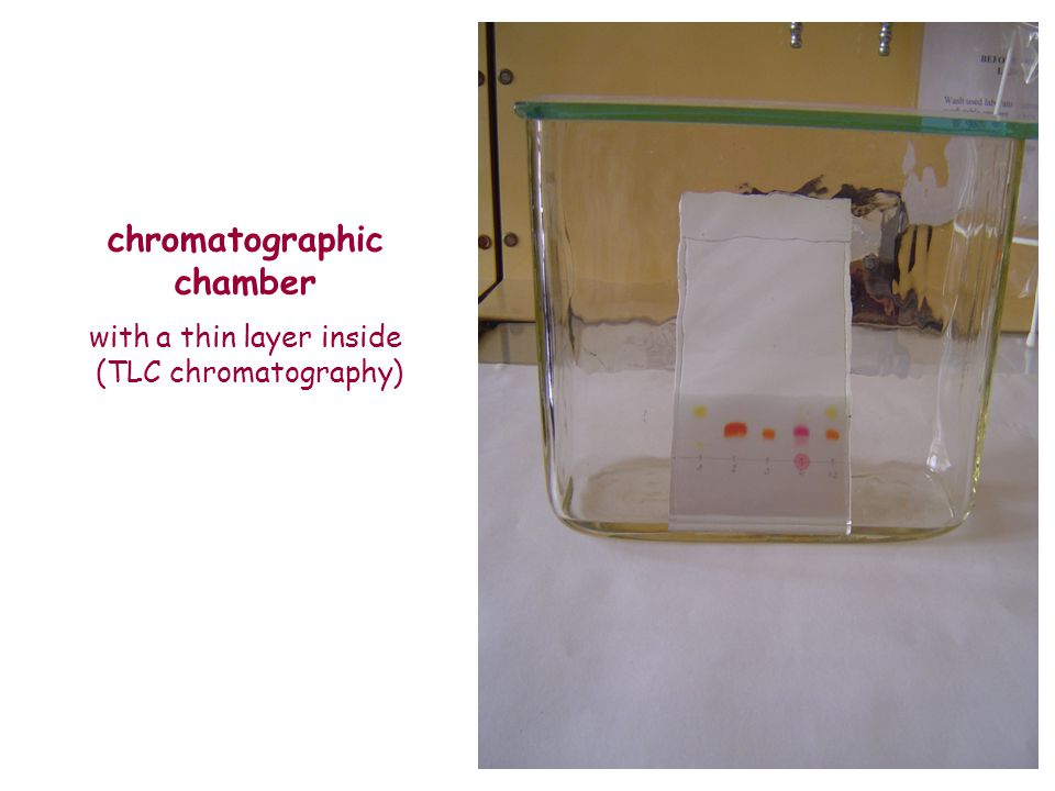 chromatographic chamber with a thin layer inside (TLC chromatography)