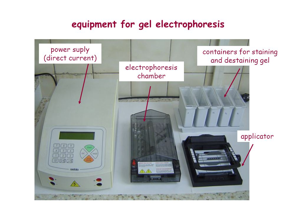 equipment for gel electrophoresis power suply (direct current) electrophoresis chamber applicator containers for staining and destaining gel