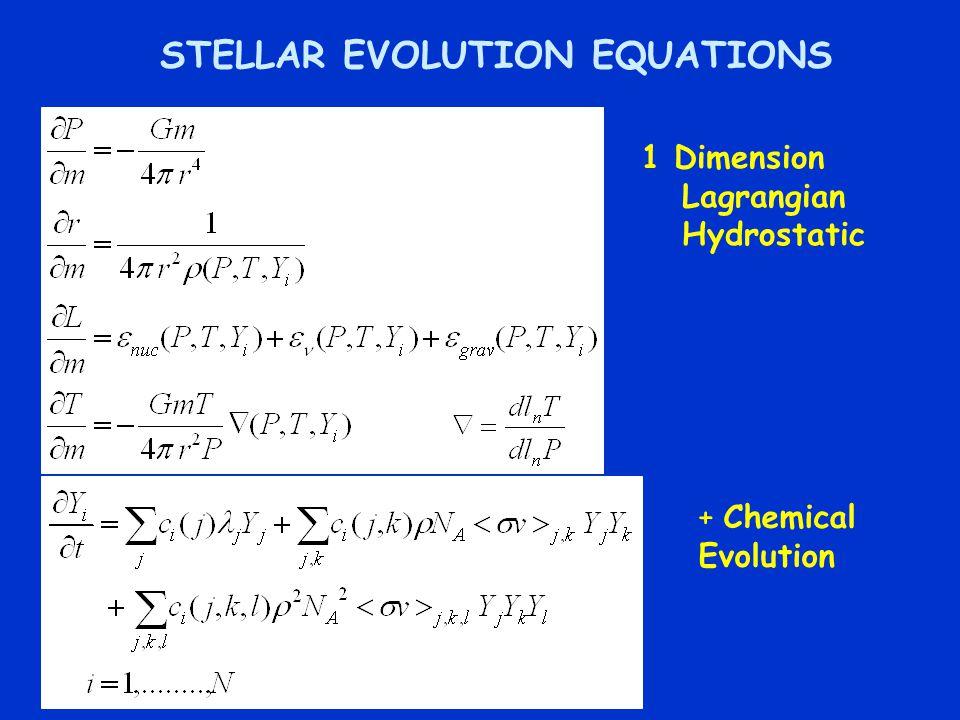 STELLAR EVOLUTION EQUATIONS 1 Dimension Lagrangian Hydrostatic + Chemical Evolution