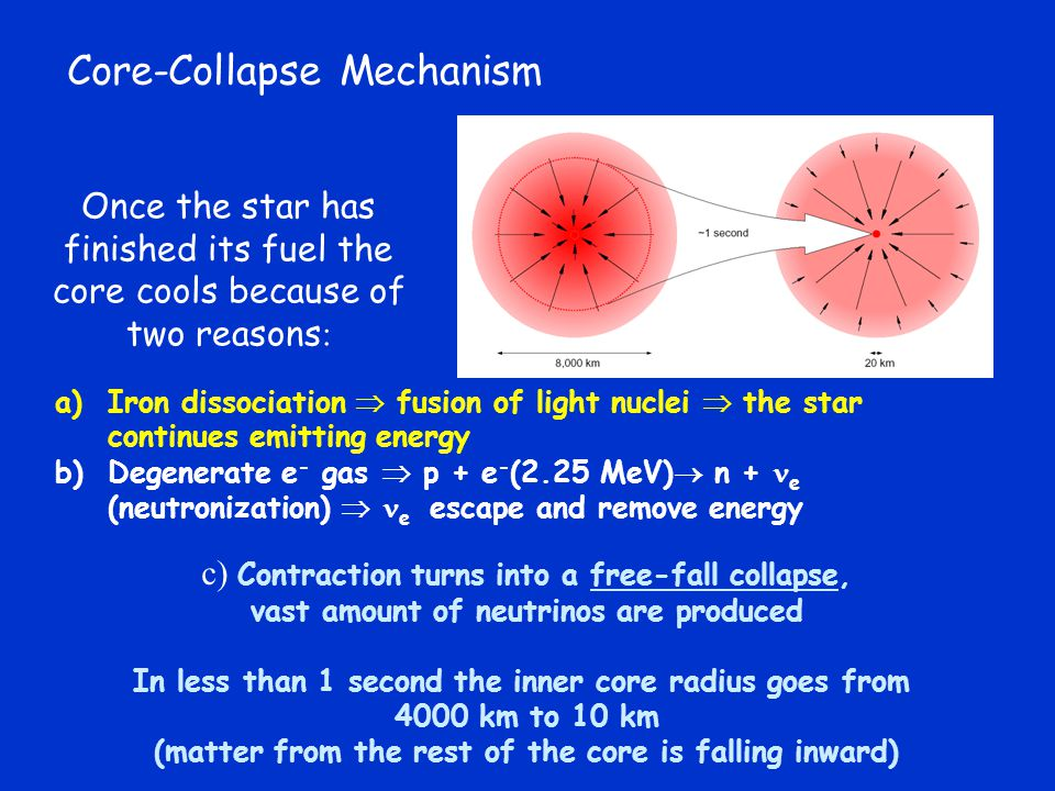 Core-Collapse Mechanism Once the star has finished its fuel the core cools because of two reasons : c) Contraction turns into a free-fall collapse, vast amount of neutrinos are produced In less than 1 second the inner core radius goes from 4000 km to 10 km (matter from the rest of the core is falling inward) a)Iron dissociation  fusion of light nuclei  the star continues emitting energy b)Degenerate e - gas  p + e - (2.25 MeV)  n + e (neutronization)  e escape and remove energy