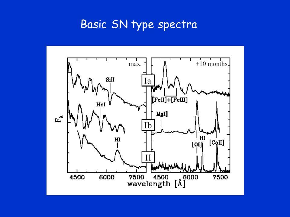 Basic SN type spectra