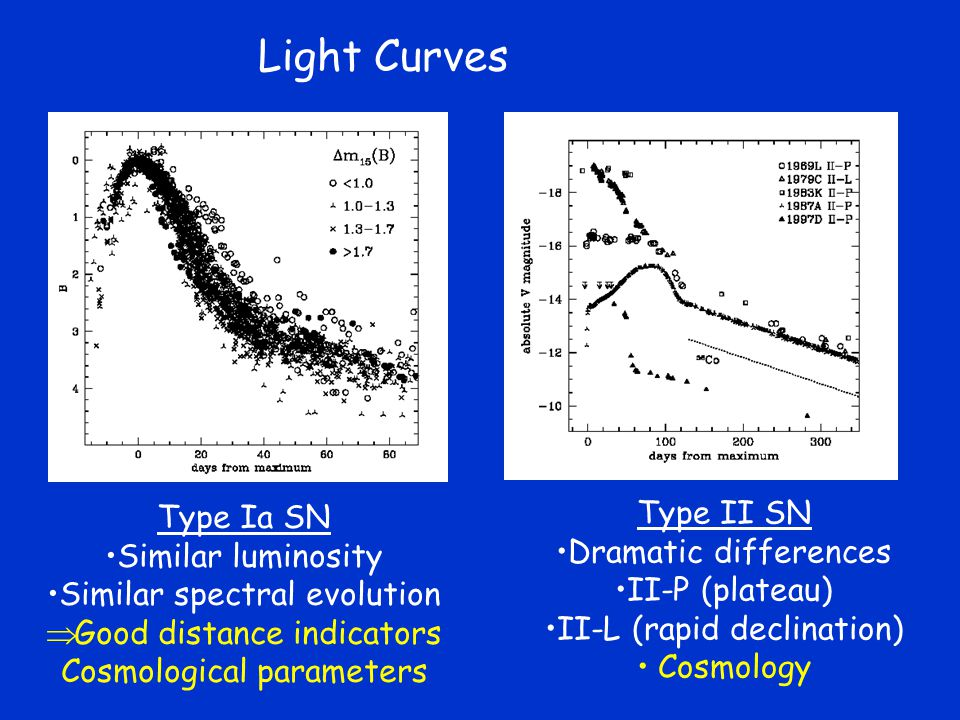 Light Curves Type Ia SN Similar luminosity Similar spectral evolution  Good distance indicators Cosmological parameters Type II SN Dramatic differences II-P (plateau) II-L (rapid declination) Cosmology