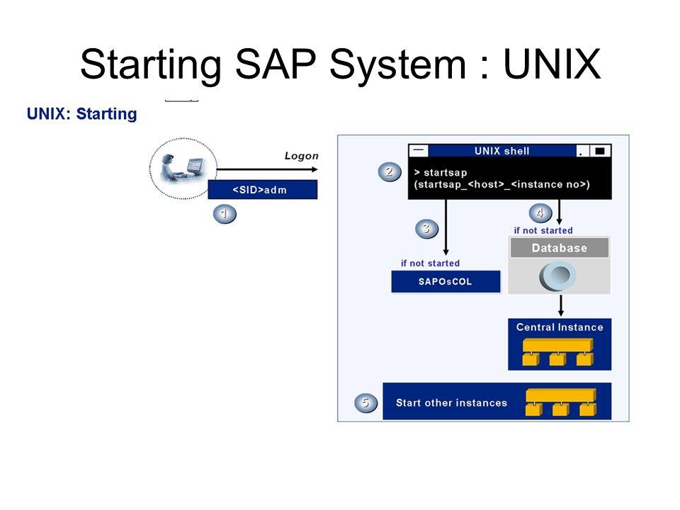 Starting SAP System : UNIX