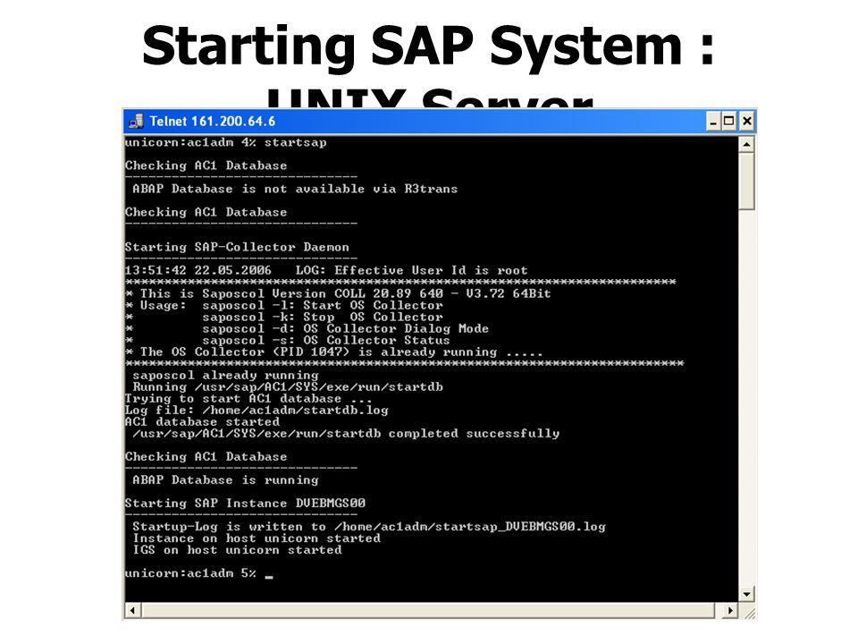 Starting SAP System : UNIX Server