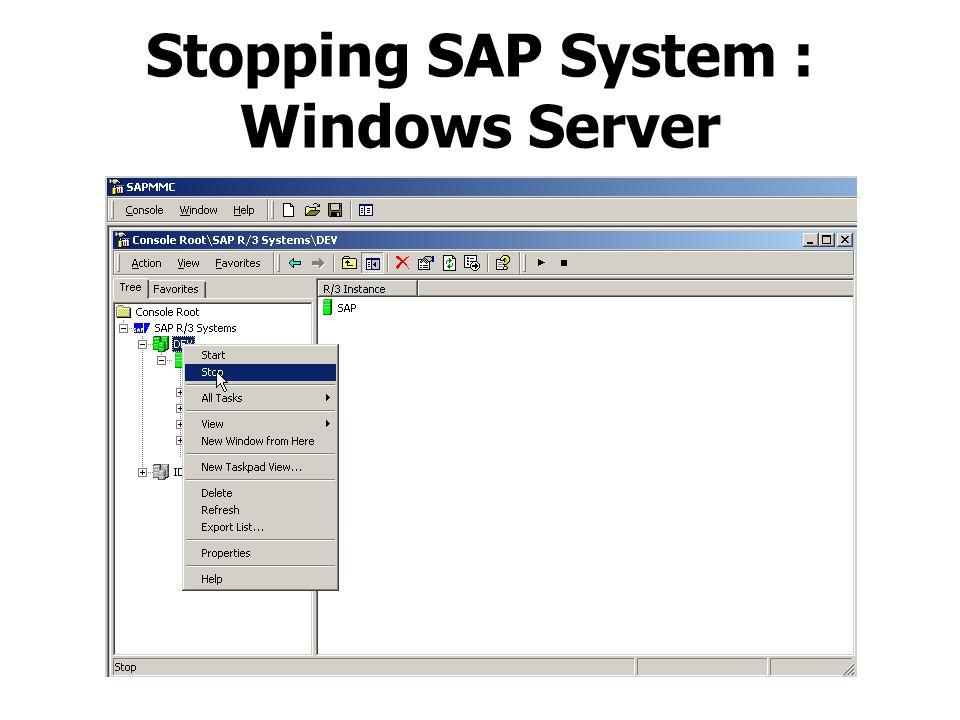 Stopping SAP System : Windows Server